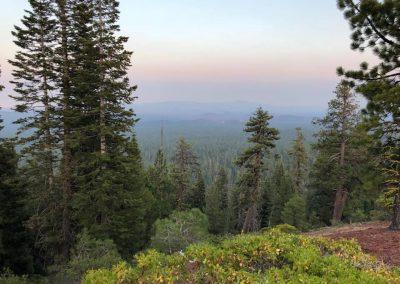 Deschutes National Forest in Bend, Oregon